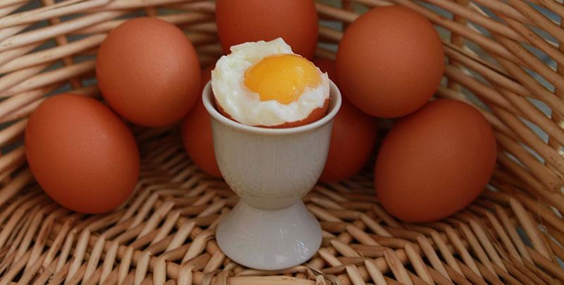 Kananmunan keltuainen