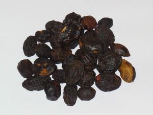 Sahapalmun kypsiä siemeniä